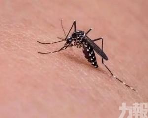 廣東確認1宗境外輸入寨卡病毒病例