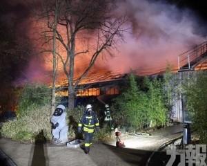 德國動物園大火 逾30隻動物被燒死