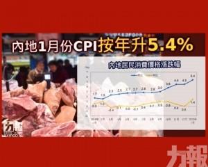 內地1月份CPI按年升5.4%