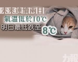明日最低跌至8 ℃