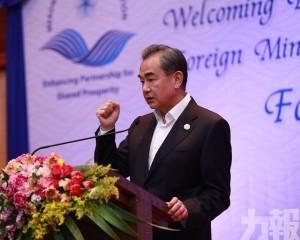 王毅:中國有把握盡早徹底戰勝疫情