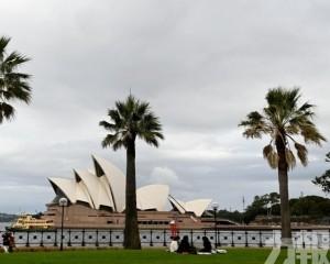 澳洲指考慮向世貿提申訴