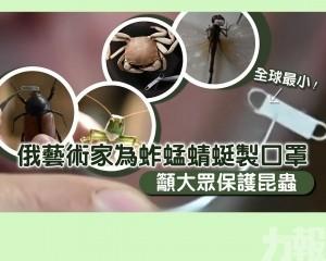俄藝術家為蚱蜢蜻蜓製口罩 籲大眾保護昆蟲