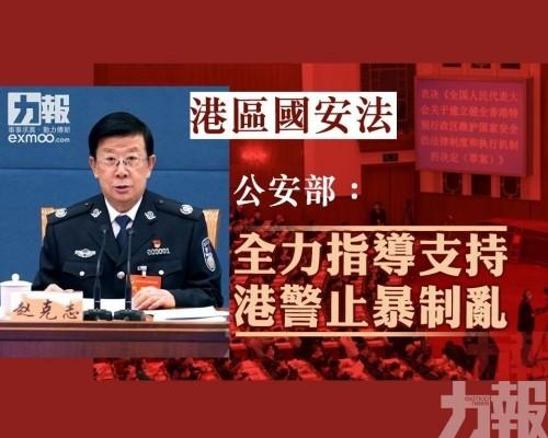 公安部:全力指導支持港警止暴制亂