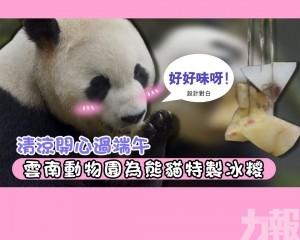 雲南動物園為熊貓特製冰糭