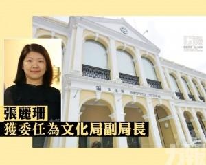 張麗珊獲委任為文化局副局長