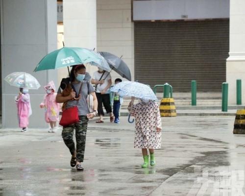 暴雨信號3級制新學年實施