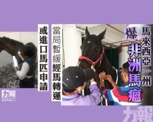 當局暫緩經馬轉運或進口馬匹申請