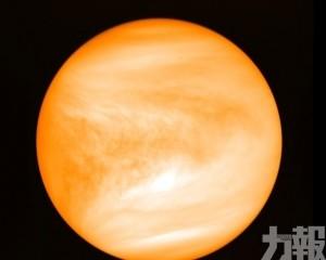 科學家推測金星可能存在生命