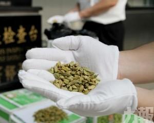 拱北海關扣逾200公斤小豆蔻