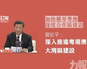 習近平:深入推進粵港澳大灣區建設