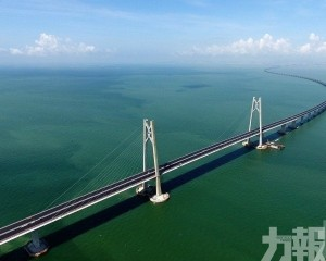 11人港珠澳大橋橋墩垂釣被捕