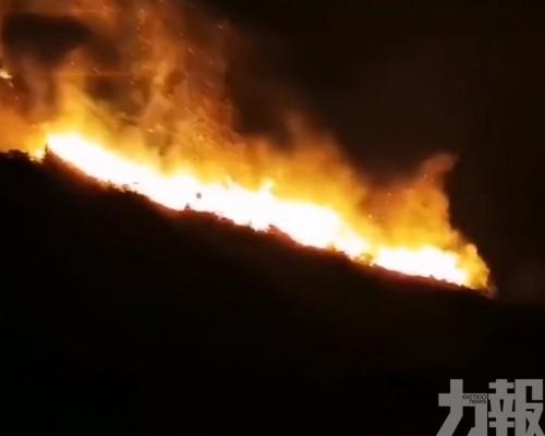 廣東汕頭南澳島發生山火