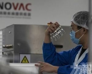 巴西批准科興新冠疫苗緊急使用許可