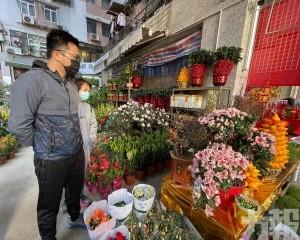 新春將至 周日花店人流暢旺 東主:目前銷情尚算理想
