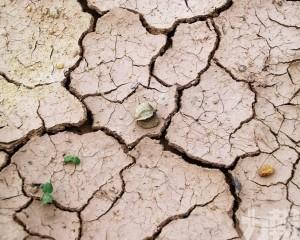 珠海深圳約70日無落雨