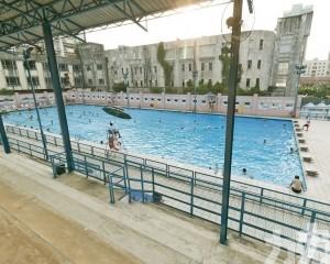 新花園泳池今恢復開放
