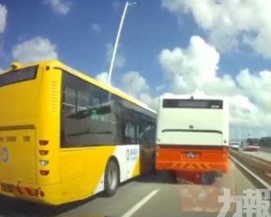 澳巴:解僱涉事車長