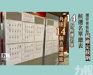 14份候選名單角逐14個直選議席