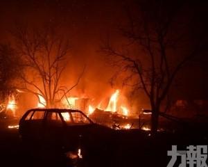 希臘雅典北部一日81宗山火