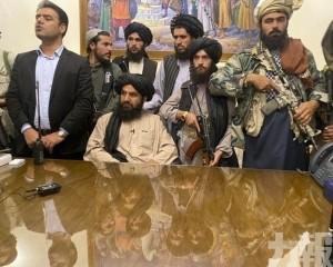阿富汗政府成最大功臣?