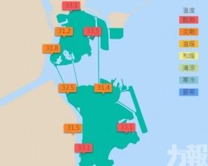 外港碼頭錄得最高溫33.5度