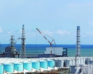 國際原子能機構高層訪問日本