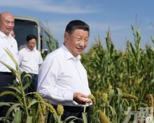 習近平考察陝西榆林市
