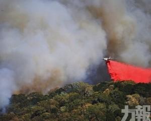 全球每年3.3萬人吸入山火煙霧亡
