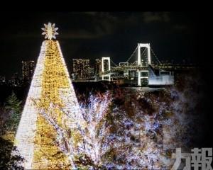 20米高真聖誕樹現身