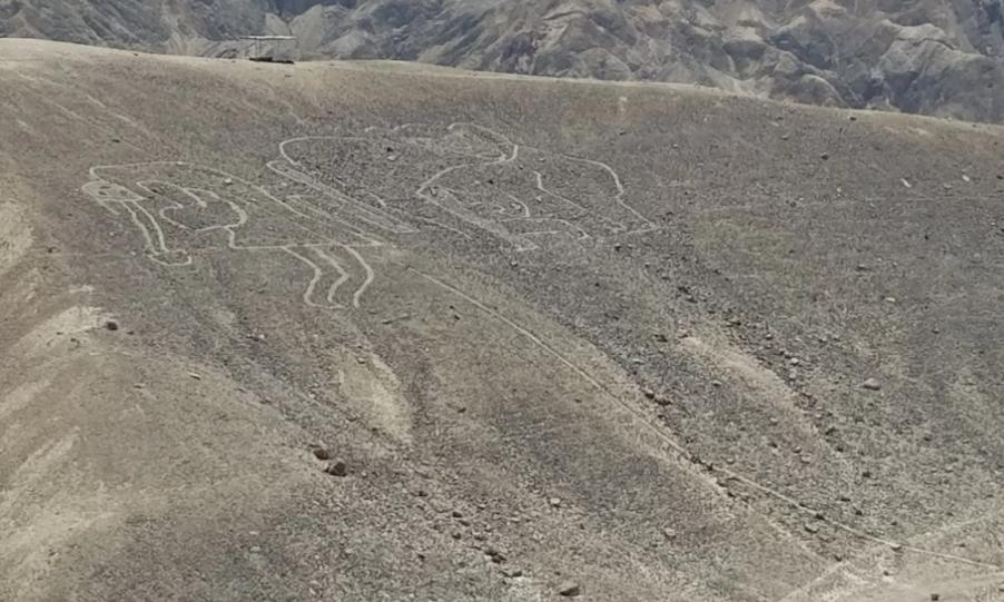 無人機揭25幅巨型地畫